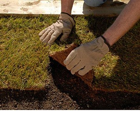 How to lay turf and maintain a lawn