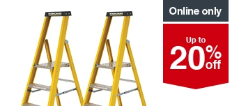 Selected Youngman Ladders
