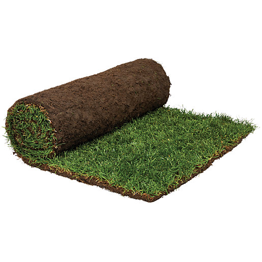 Rolawn Medallion Grass Turf Roll 1m2 Wickes Co Uk