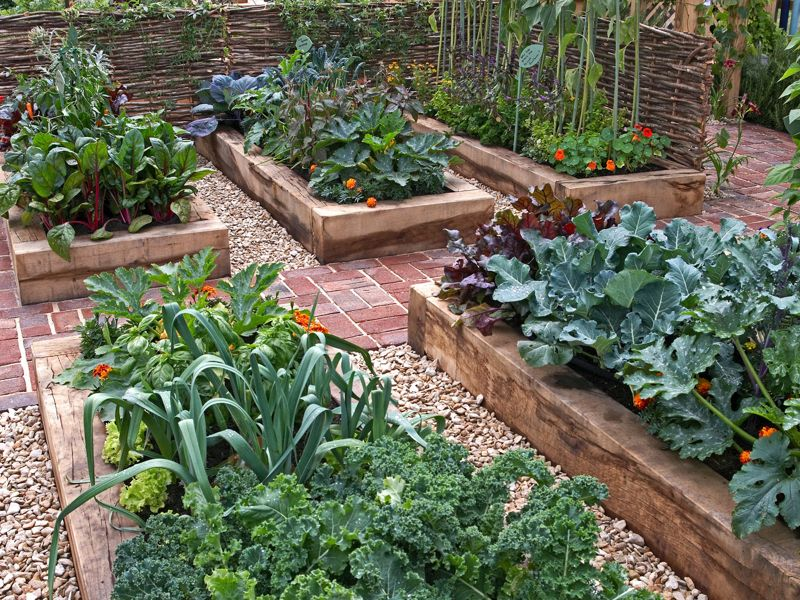 10 sleeper ideas for your garden