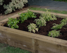 How to: Build a herb garden