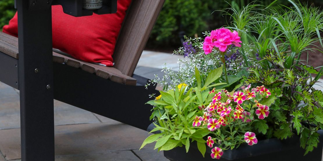 Get colourful with planting
