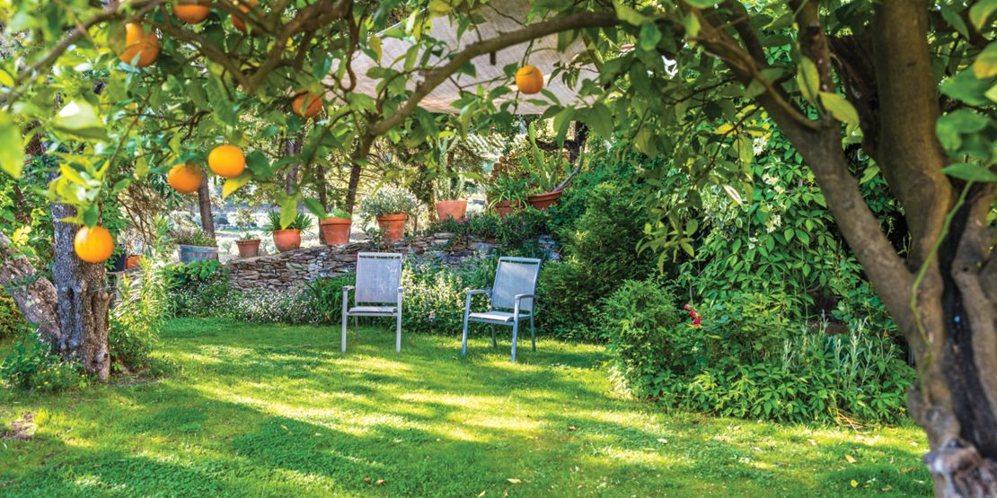 Five quick and easy garden makeovers