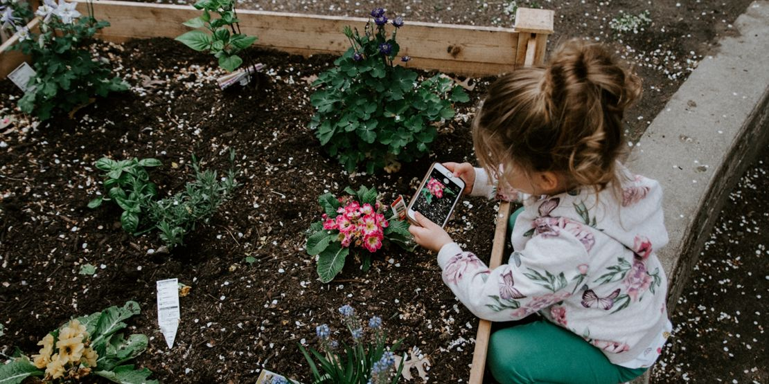 Summer planting with kids