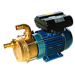 Image of Wickes Transfer Pump for Clean Liquids 1in