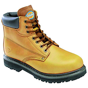 Image of Dickies Cleveland Safety Boot - Tan Size 11