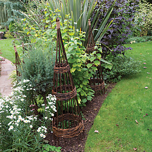 Image of Concentric Willow Obelisk 1.5m - Pack of 2
