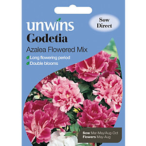 Image of Unwins Azalea Flowered Mix Godetia Seeds