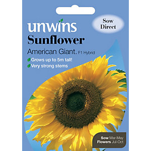 Image of Unwins American Giant F1 Sunflower Seeds