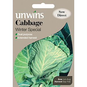 Image of Unwins Winter Special Cabbage Seeds