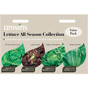 Image of Unwins All Season Collection Lettuce Seeds