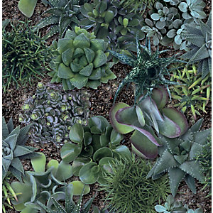 Superfresco Easy Succulent Greens Decorative Wallpaper - 10m