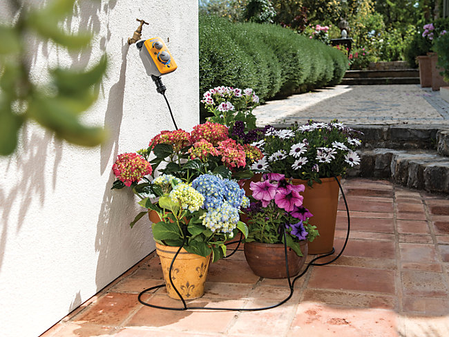 Hozelock Automatic Watering Kit
