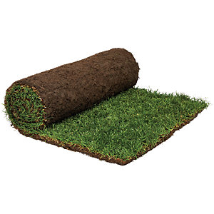Image of Rolawn Medallion Grass Turf Roll - 1m2