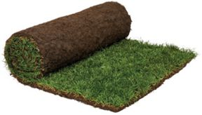 Rolawn Medallion Grass Turf Roll - 1m2