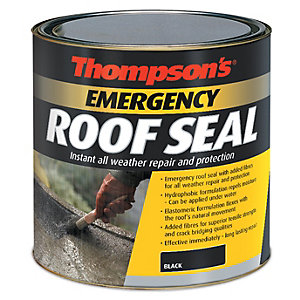 Image of Thompson's Emergency Roof Seal - Black 1L