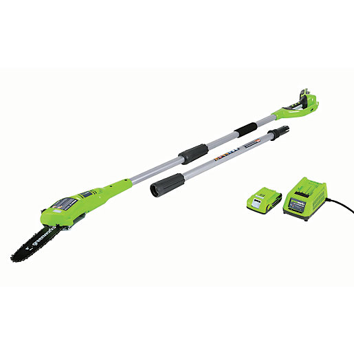 Greenworks Electric Polesaw with 2AH Battery & Charger