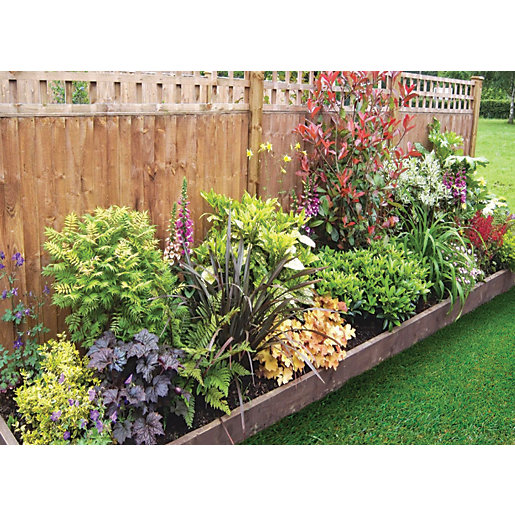Garden On A Roll Mixed Shady Border W600mm X 3m To 10m Wickes