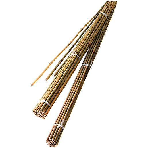 Wickes Bamboo Canes 1 5m Pack Of 10