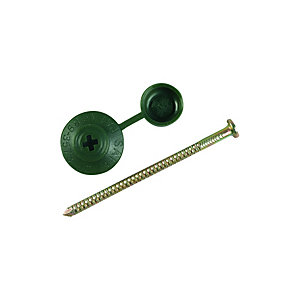 Onduline Profile Sheeting Nails 70mm Green PK100