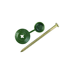 Ondulines Profile Sheeting Nails 70mm Green PK20