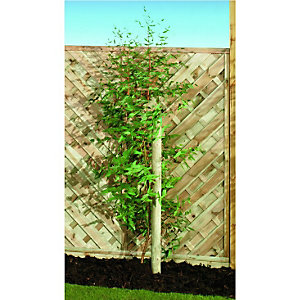 Wickes Timber Garden Tree Stake - 50mm x 2.4m