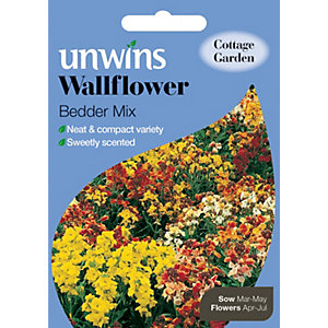 Unwins Bedder Mix Wallflower Seeds