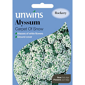 Unwins Carpet Of Snow Alyssum Seeds