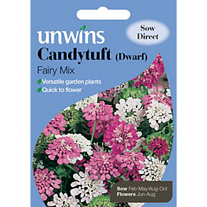 Unwins Dwarf Fairy Mix Candytuft Seeds