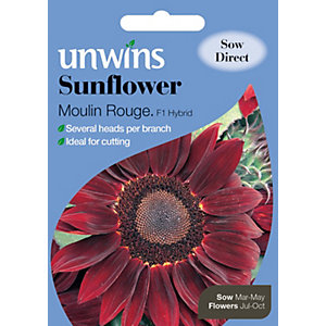 Unwins Moulin Rouge Sunflower Seeds