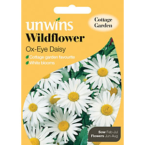 Unwins Ox Eye Daisy Wildflower Seeds