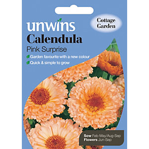 Unwins Pink Surprise Calendula Seeds