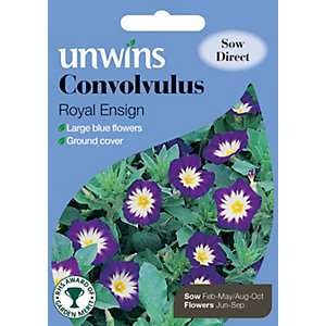 Unwins Royal Ensign Convolvulus Seeds