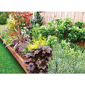 Garden On A Roll Mixed Sunny Border - W900mm x 3m to 10m