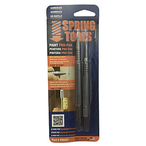 "Spring Tools Paint Pro Pack inc 1/32"" & 2/32"" nail punch & door pin remover"