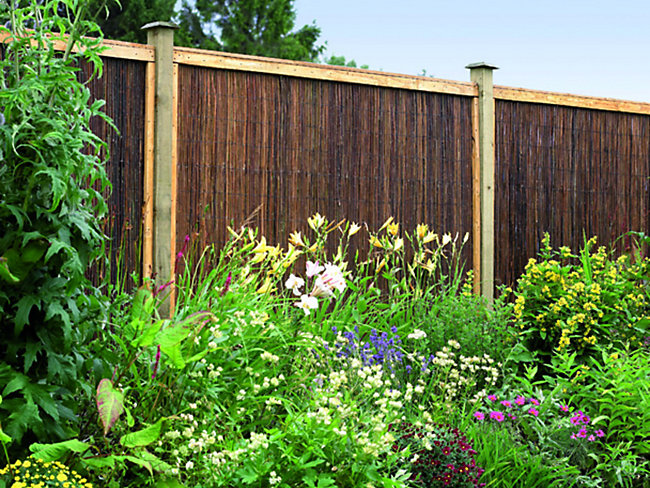Trellis & Screening