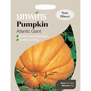 Unwins Giant Atlantic Pumpkin Seeds