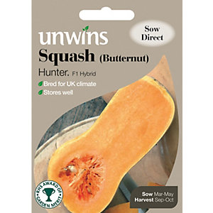 Unwins Hunter F1 Butternut Squash Seeds