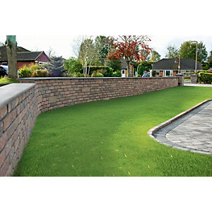 Marshalls Drivesett Tegula Walling - Traditional 300 x 100 x 65mm Pack of 240